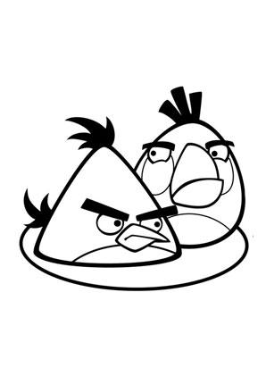 ausmalbild angry birds 19 kostenlos ausdrucken