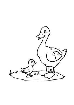 Ausmalbilder Ente auf dem Bauernhof - Bauernhof Malvorlagen