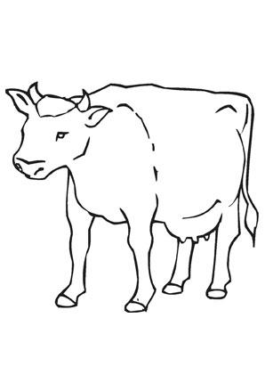 Ausmalbilder Kuh Auf Dem Bauernhof Bauernhof Malvorlagen