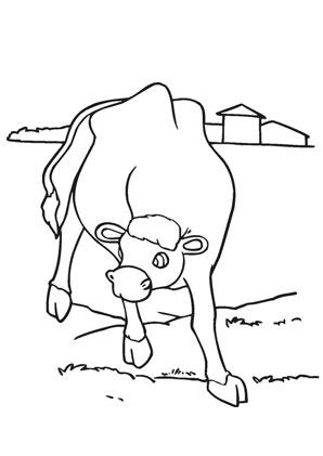 ausmalbilder kuh auf der weide - bauernhof malvorlagen