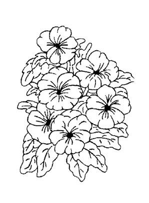 Blumen blumen 1 blumen 10 blumen 11 blumen 12 blumen 13 blumen