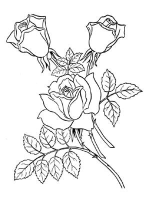 ausmalbilder rosen 1 kostenlos ausdrucken