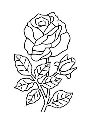 Ausmalbilder rosen drei rosen einzelne rose mehrere rosen pfingstrose