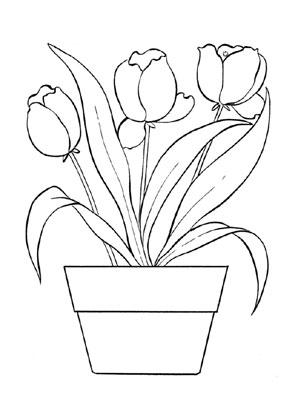 ausmalbilder tulpen 1 kostenlos ausdrucken