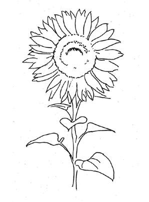 Ausmalbilder sonnenblume 2 - Blumen Malvorlagen ausmalen