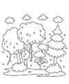 Biologie Deckblatt Wald