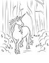 Einhorn spaziert im Wald Ausmalbild