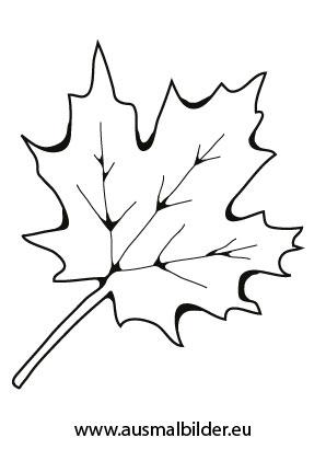 Ausmalbilder Ahornblatt Herbst Malvorlagen