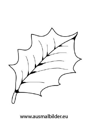 Ausmalbilder Stechpalmenblatt Herbst Malvorlagen