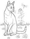 Katze auf der Wiese Ausmalbild
