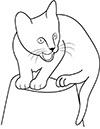Katze sitzt auf Eimer Ausmalbild