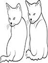 zwei kleine Katzen Ausmalbild