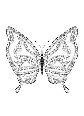 Ausmalbild Schmetterling kostenlos ausdrucken