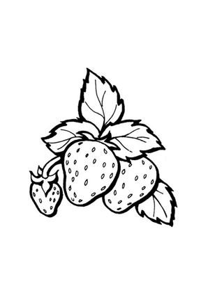 ausmalbild erdbeeren mit stiel kostenlos ausdrucken