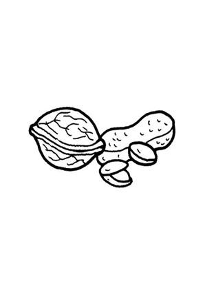 Ausmalbilder Nüsse - Obst und Gemüse Malvorlagen