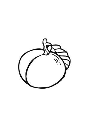 ausmalbilder pfirsich - obst und gemüse malvorlagen