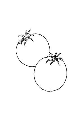 ausmalbilder tomaten - obst und gemüse malvorlagen