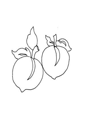 ausmalbild zwei pfirsiche kostenlos ausdrucken