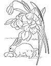 Ausmalbild Osterhase findet Eier