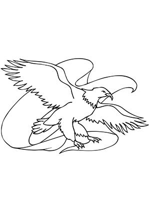 Ausmalbilder Adler 3 Adler Malvorlagen