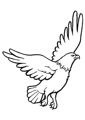 Ausmalbilder Losfliegender Adler - Adler Malvorlagen