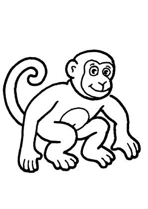 Ausmalbilder Junger Affe - Affen Malvorlagen