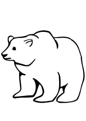 Ausmalbilder Bären Dame Bären Malvorlagen