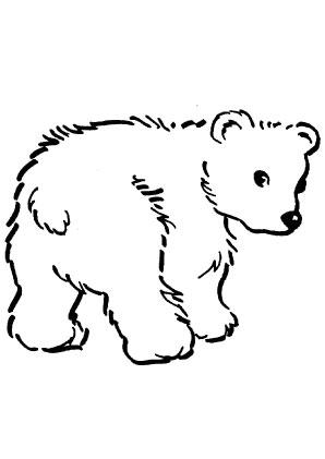 Ausmalbilder Süsser Babybär - Bären Malvorlagen