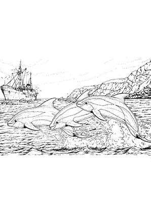 ausmalbilder delphine und ein schiff - delphine malvorlagen