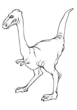 ausmalbilder junger t rex - dinosaurier malvorlagen