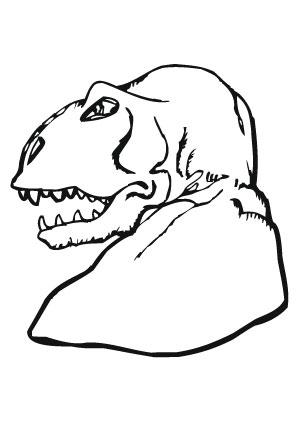 ausmalbilder tyrannosaurus rex kopf - dinosaurier malvorlagen
