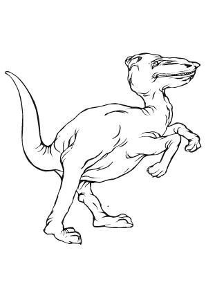 ausmalbilder verschrumpelter dino - dinosaurier malvorlagen