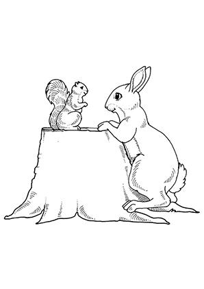 Ausmalbild Eichhornchen Und Hase Zum Ausdrucken