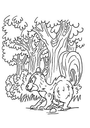 ausmalbilder struppeliges eichhörnchen - eichhörnchen