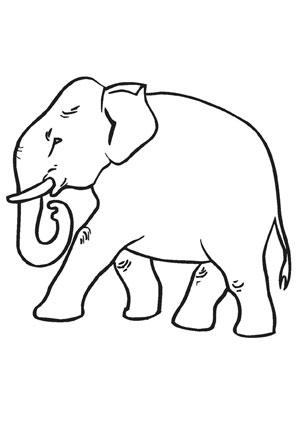 ausmalbilder alter elefant - elefanten malvorlagen
