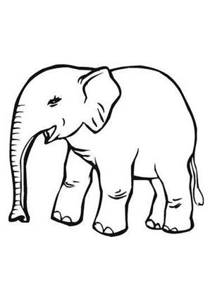 Ausmalbilder Elefant Sri Lanka - Elefanten Malvorlagen