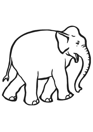 ausmalbilder junger elefant - elefanten malvorlagen