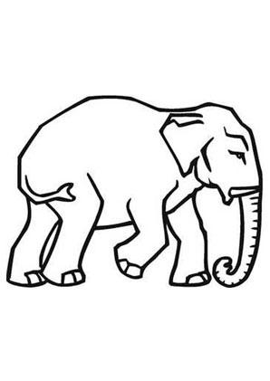 ausmalbilder kleiner elefant stosszahn - elefanten malvorlagen