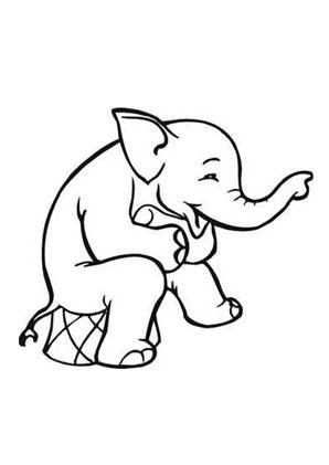 ausmalbilder zirkus elefant - elefanten malvorlagen