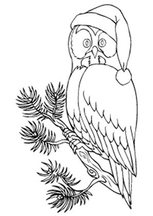 ausmalbilder eule mit weihnachtsmütze - eulen malvorlagen