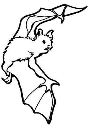 Ausmalbilder Fledermaus Schulterblick - Fledermäuse Malvorlagen