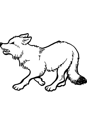 Ausmalbilder Fletschender Fuchs - Füchse Malvorlagen