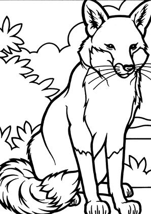 Ausmalbilder Fuchs 1 - Füchse Malvorlagen
