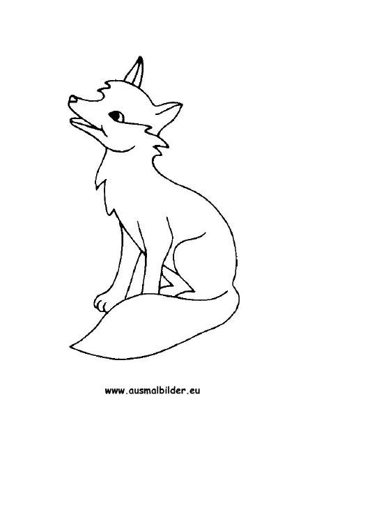 Ausmalbilder Fuchs - Füchse Malvorlagen
