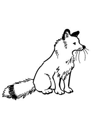 Ausmalbilder Sitzender Fuchs - Füchse Malvorlagen