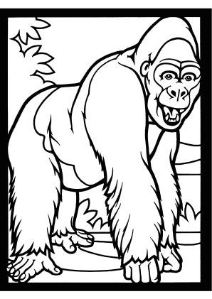 Ausmalbilder Gorilla 1 Gorillas Malvorlagen