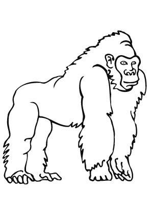 Großartig Gorilla Malvorlagen Zum Ausdrucken Zeitgenössisch - Entry ...