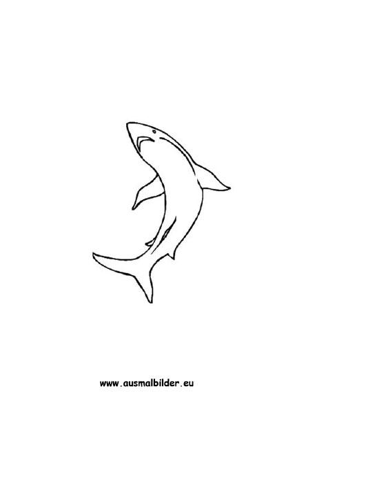 Ausmalbilder Hai Haie Malvorlagen