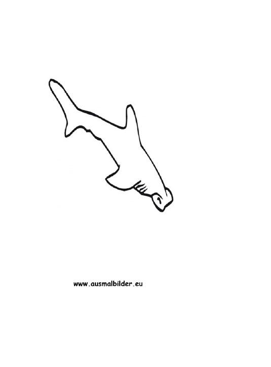 Wunderbar Hammerhai Hai Malvorlagen Zum Ausdrucken Ideen - Ideen ...