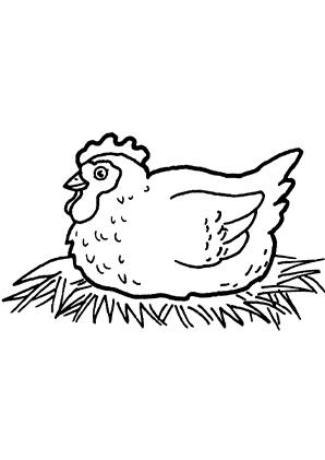 Ausmalbilder Brütende Henne - Hühner Malvorlagen
